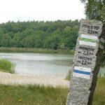 V Bieg Dookoła Jeziora Brzostek
