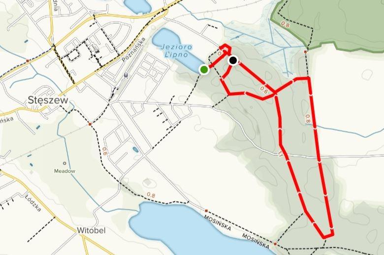 Trasa biegu - X Stęszewski Bieg Przełajowy